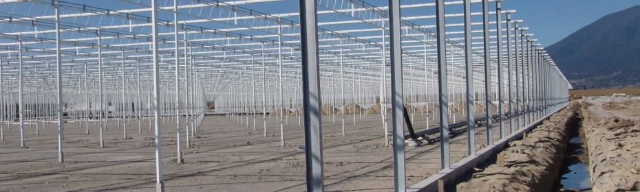 Dalsem - The complete greenhouse structure is custom made