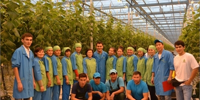 Largest Kazakh glass greenhouse