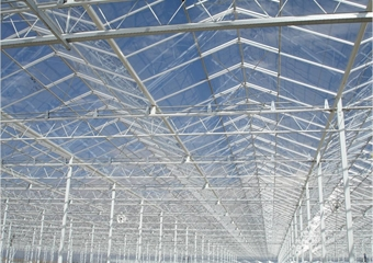 Greenhouse roof construction