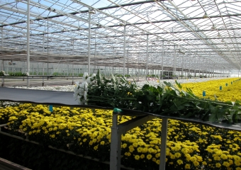 Cultivation supplies